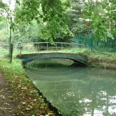 Turnford, looking downstream | Nicholas Blatchley