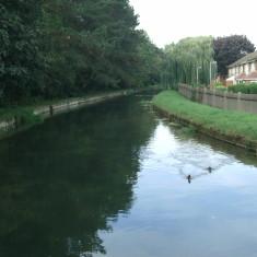 Looking upstream from Church Lane, Wormley | Nicholas Blatchley