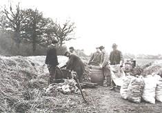 A farming scene