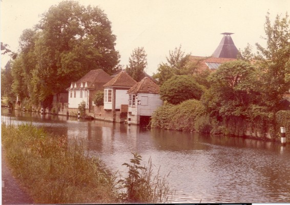 Gazebo 1981 | Hertfordshire Archives and Local Studies
