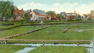 Watercress beds at Two Waters | Hertfordshire Archives and Local Studies