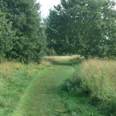 The path makes a diversion between Broxbourne & Wormely | Nicholas Blatchley